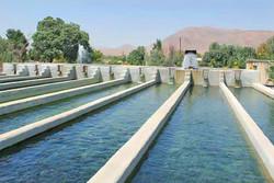 پایانه فروش و صادرات محصولات شیلاتی در زنجان ایجاد می شود