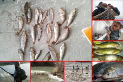 صید ماهی در نم رود