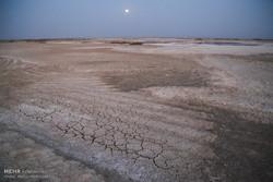 ۱۳ هزار هکتار از اراضی مستعد کشاورزی دارخوین به شوره زار تبدیل شد