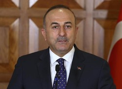 Israeli PM a 'cold-blooded killer of modern times': Turkish FM