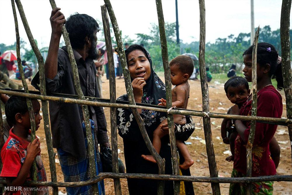 حکایت منظوم ظالمان ومظلومان میانمار/ای مسلمین!زیرگلوتیغِ کینه است
