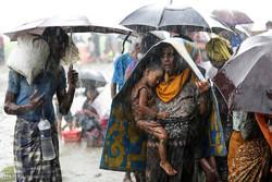 مسلمانان رنج دیده روهینگیا