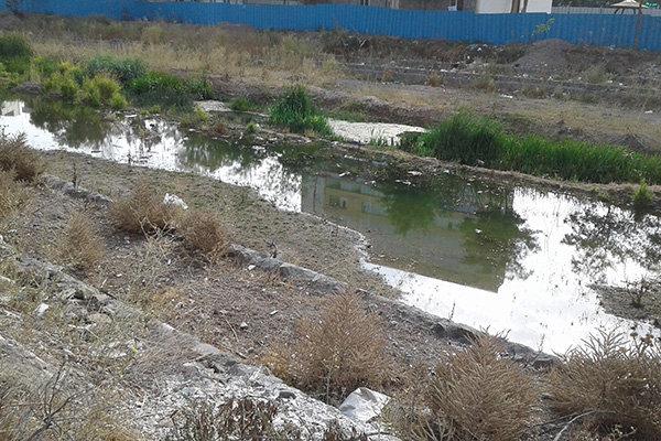 بررسی حقابه زیستی رودخانه بالخلو در شورای حفاظت منابع آب اردبیل