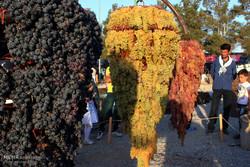 جشنواره انگور حسنرباط از ایستگاه سوم عبور کرد