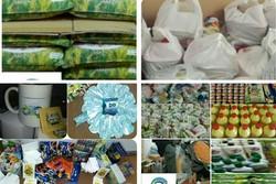 ۷۰۱ بسته تحصیلی و ۶۵ سبد کالا بین نیازمندان گناوه توزیع شد
