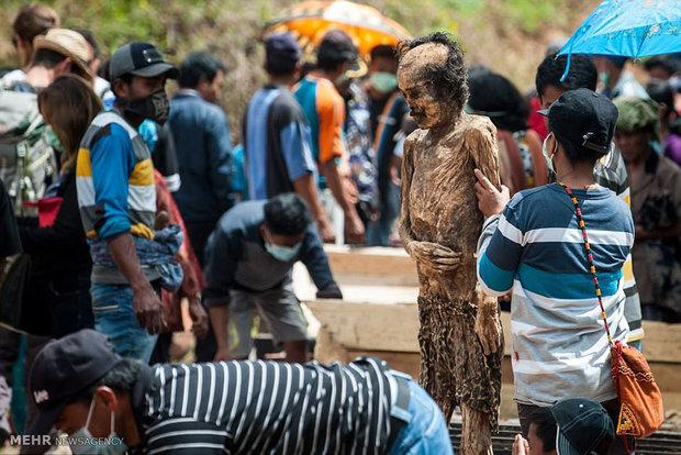 تصاویر/ خارج کردن مردگان از گور در اندونزی