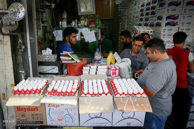 واردات ۲۰ هزار تن تخم مرغ برای تنظیم بازار