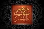 رئیس شورای اسلامی شهرستان آبادان انتخاب شد