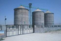 سرمایه گذاری ۶۵ میلیارد تومانی برای سیلوسازی گندم در دهلران