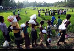 Iran's humanitarian aid reaches Rohingya