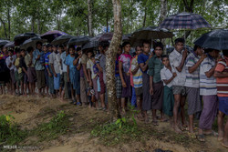 Aung San Suu Kyi's head in sand over genocide in Rakhin: Amnesty