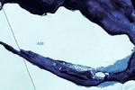 تکه یخ هزار میلیارد تنی در دریا سرگردان شد