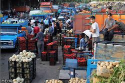 بازارهای میادین میوه و تره بار در استان های دیگر افزایش می یابد/هشدار تب کریمه