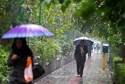 بارش باران در راه چند استان کشور
