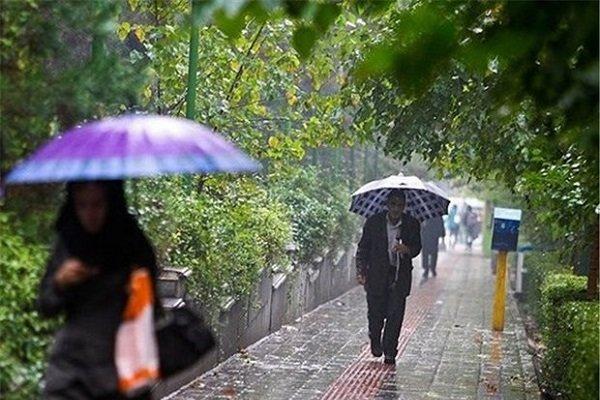 هوای بارانی - کراپشده
