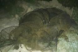 ادوات شکار و صید غیرمجاز در پارک ملی بوچاق کیاشهر کشف و ضبط شد
