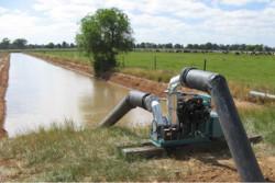 چاهموتورهای کشاورزی رفسنجان به مدت ۴۵ روز خاموش می شوند