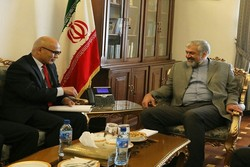 Iran, Indonesia stress joint coop. for establishing peace