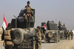 Iraqi government troops surround Mosul, await orders