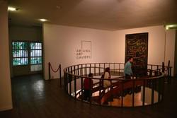 Ariana Gallery