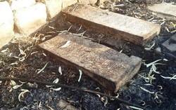 قبرستان تاریخی شیراز طعمه حریق شد