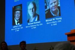 ۳ دانشمند آمریکایی برنده جایزه نوبل پزشکی شدند