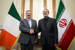 دیدار رییس مجلس سنای ایرلند با رییس مجلس
