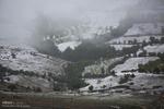 موج سرما در کشور/ دمای هوا در کرمانشاه به ۱۰ درجه زیرصفر میرسد