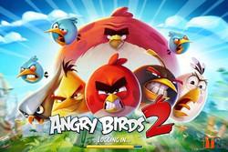 پرندگان عصبانی