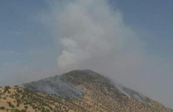 کوه بیل دوباره طعمه آتش شد - خبرگزاری مهر | اخبار ایران و جهان | Mehr News  Agency