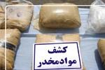 ۷۵ درصد جرایم در زنجان را معتادان انجام می دهند/کشف ۳۶ کیلوگرم گل