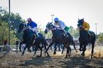 سباق الخيول بمدينة طهران / صور