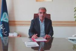 محمد سعیدی مدیرکل دامپزشکی استان سمنان - کراپشده