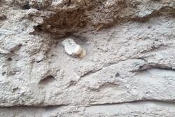 آغاز کاوش اضطراری محوطه باستانی «شهران»