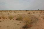 فرسایش خاک ایران ٢.٥ برابر متوسط جهانی/ بودجه برنامه ششم هنوز نرسیده است