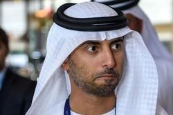 وزیر انرژی امارات
