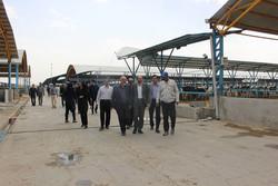 تولید انرژی از گازهای گلخانه ای در قزوین