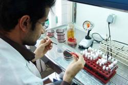 ۱۵۰۰ نفر زنجانی به مراکز مشاوره ژنتیک بهزیستی مراجعه کردند