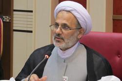 امسال ۳ میلیون زائر ایرانی در پیاده روی اربعین شرکت می کنند