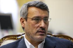 Nuclear spy not member of negotiating team: ambassador