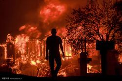 خسارات آتش سوزی در کالیفرنیا