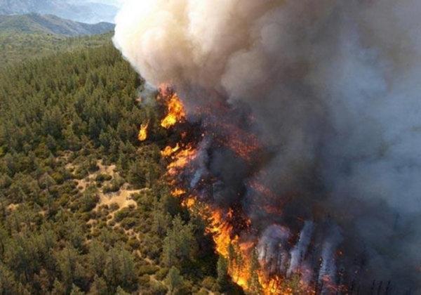 آتشسوزی آمریکا