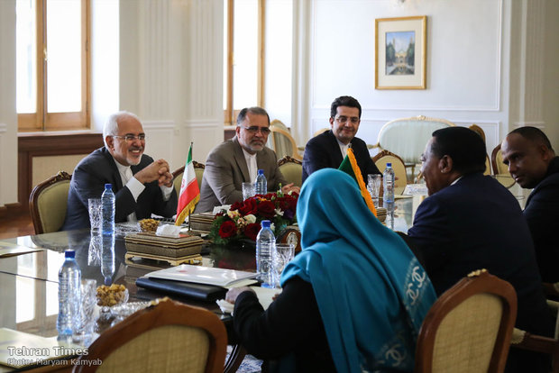 Zarif receives Tanzanian counterpart in Tehran