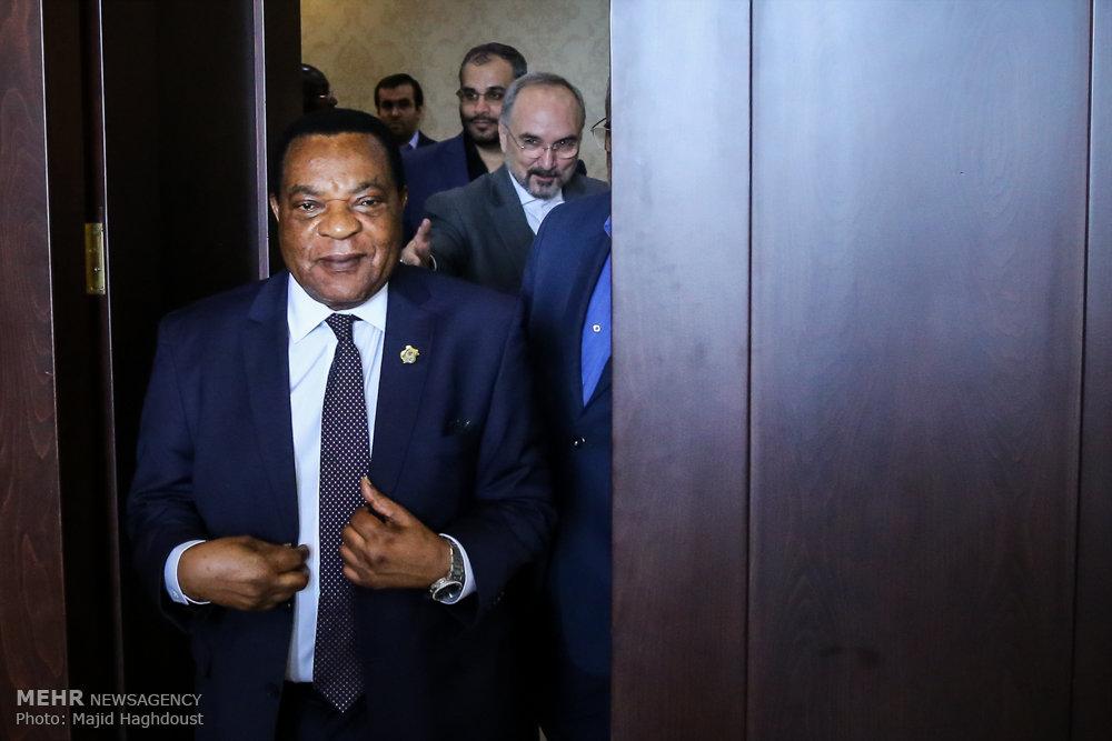 دیدار وزیر خارجه تانزانیا با وزیر اقتصاد ایران