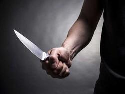 ہالینڈ میں پولیس نے چاقو بردار شخص کو گرفتار کرلیا