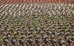 Iranian Army backs IRGC unified against U.S. threats