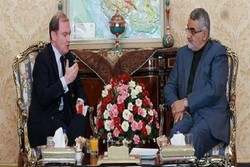 Iran, France exchange views on Syrian crisis