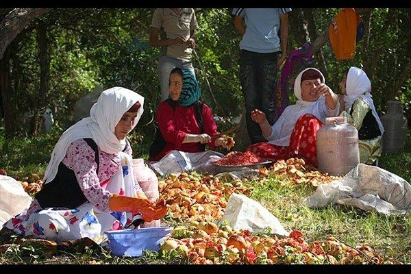 MOU signed to support rural and nomad women for healthy food production