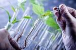 سردخانه جدید بانک ژن گیاهی ملی ایران افتتاح شد