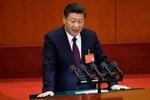 شی جینپینگ: از سیستم سیاسی بیگانگان الگو نمیگیریم